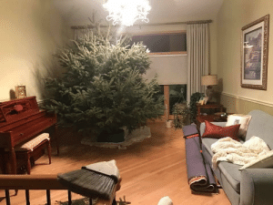 Just a reminder that this was the Christmas tree my dad picked out in 2016…: Just a reminder that this was the Christmas tree my dad picked out in 2016…