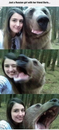 Sometimes I forget bears will kill you.: Just a Russian girl with her friend Boris... Sometimes I forget bears will kill you.