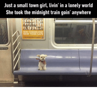 9gag, Journey, and Lean: Just a small town girl, livin' in a lonely world  She took the midnight train goin' anywhere  NEW YORKERS KEEP  NEW YORK SAFE  t lean on door Don't stop believin' -Hold on to that feelin'. 🐶 Follow @9gag - - 📝 oafale | Twitter - - 9gag dontstopbelieving journey