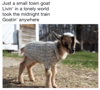 Took The Midnight Train: Just a small town goat  Livin' in a lonely world  took the midnight train  Goatin' anywhere