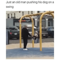 Memes, Old Man, and Old: Just an old man pushing his dog on a  swing
