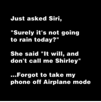 "Memes, Phone, and Siri: Just asked Siri,  ""Surely it's not going  to rain today?""  She said ""It will, and  don't call me Shirley""  ..Forgot to take my  phone off Airplane mode"