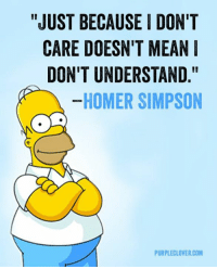 "Homer: ""JUST BECAUSE I DON'T  CARE DOESN'T MEAN  DON'T UNDERSTAND  HOMER SIMPSON  PURPLECLOVER.COM"