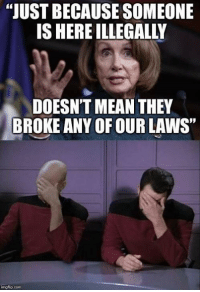 """Memes, Brain, and Mean: JUST BECAUSE SOMEONE  IS HERE ILLEGALLY  DOESN'T MEAN THEY  BROKE ANY OF OUR LAWS""""  imgflip.con The Botox screwed up her brain years ago.  -Chad"""