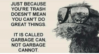 Dank, Trash, and Mean: JUST BECAUSE  YOU'RE TRASH  DOESN'T MEAN  YOU CAN'T DO  GREAT THINGS  IT IS CALLED  GARBAGE CAN,  NOT GARBAGE  CANNOT.