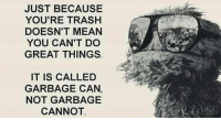 Trash, Mean, and Garbage: JUST BECAUSE  YOU'RE TRASH  DOESN'T MEAN  YOU CAN'T DO  GREAT THINGS  IT IS CALLED  GARBAGE CAN,  NOT GARBAGE  CANNOT.