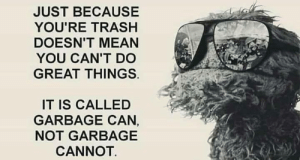 Trash, Mean, and Old: JUST BECAUSE  YOU'RE TRASH  DOESN'T MEAN  YOU CAN'T DO  GREAT THINGS  IT IS CALLED  GARBAGE CAN,  NOT GARBAGE  CANNOT. Oscar was a wise old grouch