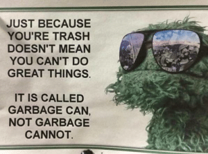 Dank, Memes, and Reddit: JUST BECAUSE  YOU'RE TRASH  DOESN'T MEAN  YOU CAN'T DO  GREAT THINGS  IT IS CALLED  GARBAGE CAN,  NOT GARBAGE  CANNOT …….nods…….. by PANlC4TT4CK FOLLOW 4 MORE MEMES.