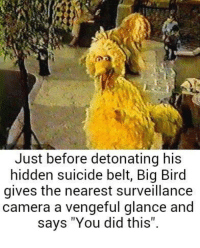 """Big Bird: Just before detonating his  hidden suicide belt, Big Bird  gives the nearest surveillance  camera a vengeful glance and  says: """"You did this""""."""