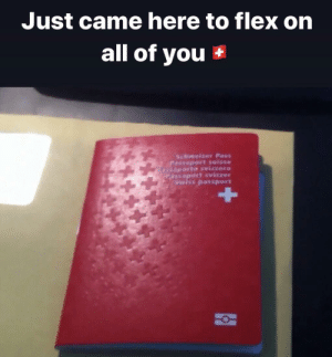 Have fun with your World War: Just came here to flex on  all of you  Schweizer Pass  Passeport suisse  8aporto svizzero  Passaport svizzer  Swiss passport Have fun with your World War