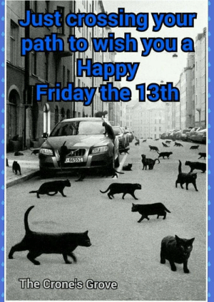 Happy Friday the 13th!!: Just crossing your  path to wish you  Нарру  Friday the 13th  66551  The Crone's Grove Happy Friday the 13th!!
