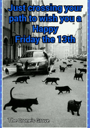 Happy Friday the 13th!!: Just crossing your  pathto wish you  Нарру  bFriday the 13th  66551  The Crone's Grove Happy Friday the 13th!!