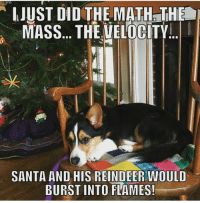 He'll be okay 😂 (Via @einsteinthesciencecorgi): JUST DID THE MATH THE  MASS... THE VELOCITY  SANTA AND HIS REINDEER WOULD  BURST INTO FLAMES! He'll be okay 😂 (Via @einsteinthesciencecorgi)