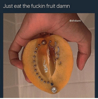 Dildo, Fupa, and Pussy: Just eat the fuckin fruit damn  @afrokami A girl can use a dildo without it being socially unaccepted, but if i want to use my Hairy Fupa Vacuum Turbo Pocket Pussy, i'm looked down upon 🙄 • Follow @mrstealyourchill for more