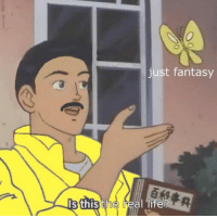 Life, Memes, and The Real: just fantasy  s this the real life?
