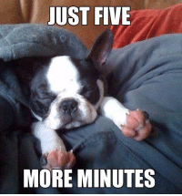 Just 5 more minutes!: JUST FIVE  MORE MINUTES Just 5 more minutes!