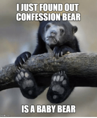 Well I can't unsee that...: JUST FOUND OUT  CONFESSION BEAR  mgiip.com Well I can't unsee that...