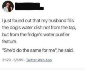 "Reading this makes me want to cry.: just found out that my husband fills  the dog's water dish not from the tap,  but from the fridge's water purifier  feature.  ""She'd do the same for me"", he said.  21:20 5/6/19 Twitter Web App Reading this makes me want to cry."