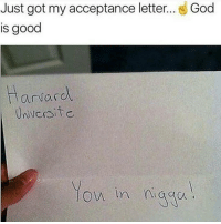 Christmas, Cute, and Fall: Just got my acceptance letter  God  is good  arvard.  low in  naga ~Buston Nut youtube cancer cancerous lol funny bleach love amazing cute me look selfie style funny relatable tumblr funnymemes funnytextpost tumblrtextpost textpost cool fall christmas snow january 2k17 2017 newyear