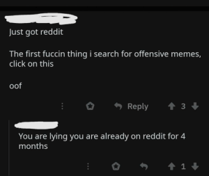 Click, Memes, and Reddit: Just got reddit  The first fuccin thing i search for offensive memes,  click on this  oof  Reply  You are lying you are already on reddit for 4  months  1 A Simple Case of Bullshit