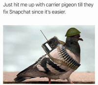Memes, Snapchat, and 🤖: Just hit me up with carrier pigeon till they  fix Snapchat since it's easier. For real man.
