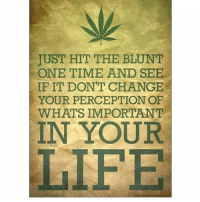 Blunts, Memes, and Perception: JUST HIT THE BLUNT  ONE TIME AND SEE  IF IT DONT CHANGE  YOUR PERCEPTION OF  WHATS IMPORTANT  IN YOUR  LIFE