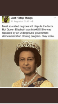 Facts, Tfw, and Queen: Just Hotep Things  11 August at 01:45 .  Most so-called negroes will dispute the facts  But Queen Eizabeth was blakk!!!!! She was  replaced by an underground government  demelaninization cloning program. Stay woke.