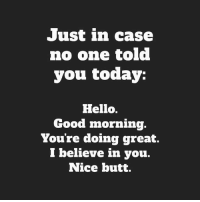 Butt, Hello, and Memes: Just in case  no one told  you today:  Hello.  Good morning.  Youre doing great.  l believe in you.  Nice butt.