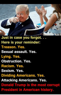 Donald Trump, Racism, and American: Just in case you forgot. . .  Here is your reminder:  Treason. Yes  Sexual assault. Yes.  Lying. Yes.  Obstruction. Yes.  Racism. Yes.  Sexism. Yes.  Dividing Americans. Yes.  Attacking Americans. Yes.  Donald Trump is the most corrupt  President in American history