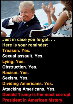"Donald Trump, Memes, and Racism: Just in case you forgot. ""  Here is your reminder:  Treason. Yes.  Sexual assault. Yes.  Lying. Yes.  Obstruction. Yes.  Racism. Yes.  Sexism. Yes.  Dividing Americans. Yes.  Attacking Americans. Yes.  Donald Trump is the most corrupt  President in American history Trump sucks"