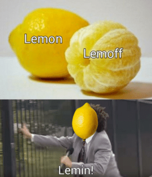 Just let the lemon in god dammit: Just let the lemon in god dammit
