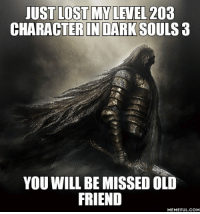 Dark Souls: JUST LOST MY LEVEL 203  CHARACTER IN DARK SOULS 3  YOU WILL BE MISSED OLD  FRIEND  MEMEFUL COM