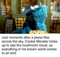 Cookie Monster, Monster, and Cloud: Just moments after a plane flew  across the sky, Cookie Monster looks  up to see the mushroom cloud, as  everything in his known world comes  to an end