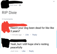 """Facebook, Yeah, and Http: Just now .  RIP Dixie  2 Comments  Hasn't your dog been dead for like like  3 years?  1 minute agoLike Reply  Yeah, but I still hope she's resting  peacefully  Just now Like Reply <p>Facebook hit me in the feels this morning via /r/wholesomememes <a href=""""http://ift.tt/2yzsbfW"""">http://ift.tt/2yzsbfW</a></p>"""