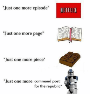 """Netflix, Tumblr, and Blog: """"Just one more episode""""  NETFLIX  """"Just one more page  """"Just one more piece""""  """"Just one more command post  for the republic"""" scifiseries:  For the Chancellor!"""