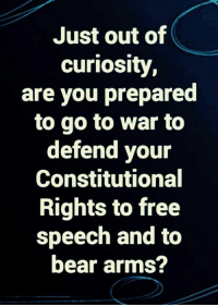 Memes, Bear, and Free: Just out of  curiosity  are you prepared  to go to war to  defend your  Constitutional  Rights to free  speech and to  bear arms?
