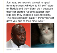 "Cats, Reddit, and Jumped: Just read someone's 'almost jumped  from apartment window to kill self story  on Reddit and they didn't do it because  their cat started rubbing against their  legs and they snapped back to reality.  The next comment said: ""l think your cat  gave you one of their nine lives.""  12:31 PM - 7 Jun 2018 <p>We don't deserve cats via /r/wholesomememes <a href=""https://ift.tt/2y2Ruuk"">https://ift.tt/2y2Ruuk</a></p>"