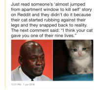 "Reddit, Jumped, and Reality: Just read someone's 'almost jumped  from apartment window to kill self' story  on Reddit and they didn't do it because  their cat started rubbing against their  legs and they snapped back to reality.  The next comment said: ""l think your cat  gave you one of their nine lives.""  2:31 PM-7 Jun 2018"