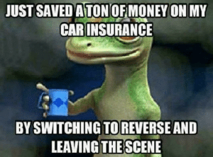 Dank, Memes, and Money: JUST SAVED A TON OF MONEY ON MY  CAR INSURANCE  BY SWITCHING TOREVERSE AND  LEAVING THE SCENE Geico.. by 0nly0bjective FOLLOW 4 MORE MEMES.