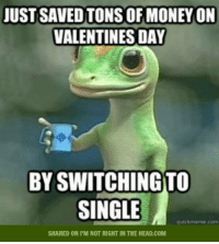 A classic.: JUST SAVED TONS OF MONEYON  VALENTINES DAY  BYSWITCHINGTO  SINGLE  quick meme coen  SHARED ON I'M NOT RIGHT IN THE HEAD.COM A classic.