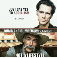 "Jim Carrey, Memes, and Lifestyle: JUST SAY YES  TO SOCIALISM  JIM CARREY  ""DUMBAND DUMBER WAS A MOVIE  NOT A LIFESTYLE"