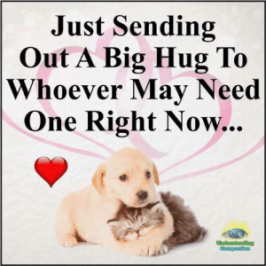 Memes, Compassion, and Understanding: Just Sending  Out A Big Hug To  Whoever May Need  One Right Now... Understanding Compassion <3