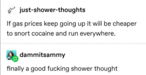 : just-shower-thoughts  If gas prices keep going up it will be cheaper  to snort cocaine and run everywhere.  dammitsammy  finally a good fucking shower thought