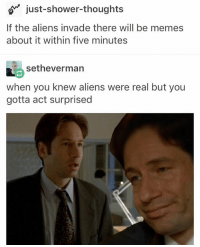 "My favorite description of the x files so far has been ""two nerds who pretend to be platonic while one tries to prove aliens have tiddies"": just-shower-thoughts  If the aliens invade there will be memes  about it within five minutes  setheverman  when you knew aliens were real but you  gotta act surprised My favorite description of the x files so far has been ""two nerds who pretend to be platonic while one tries to prove aliens have tiddies"""