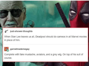 Dank, Fake, and Memes: just-shower-thoughts  When Stan Lee leaves us all, Deadpool should do cameos in all Marvel movies  in place of him.  garnetmademegay  Complete with fake mustache, aviators, and a grey wig. On top of his suit of  course. I'm for it by metalbowser23 MORE MEMES