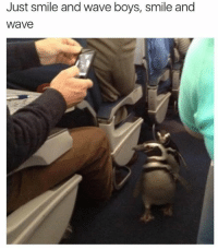 boys smiling: Just smile and wave boys, smile and  Wave