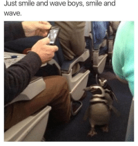 Memes, Smile, and Haha: Just smile and wave boys, smile and  Wave Haha