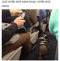happy frieday chlesterol: Just smile and wave boys, smile and  Wave happy frieday chlesterol