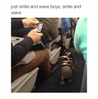 I hate my life I wanna die: just smile and wave boys, smile and  Wave I hate my life I wanna die