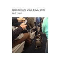 I want pancakes: just smile and wave boys, smile  and wave I want pancakes
